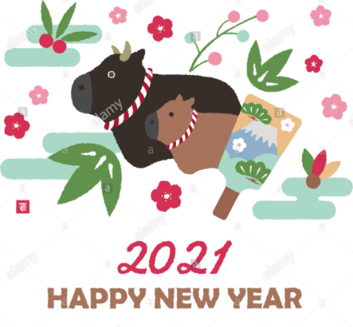 Featured image for Reviewing 2020 to start 2021