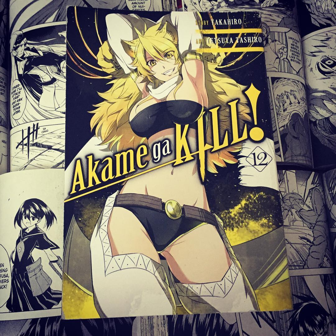 Featured image for Akame ga Kill! (Volume 12)