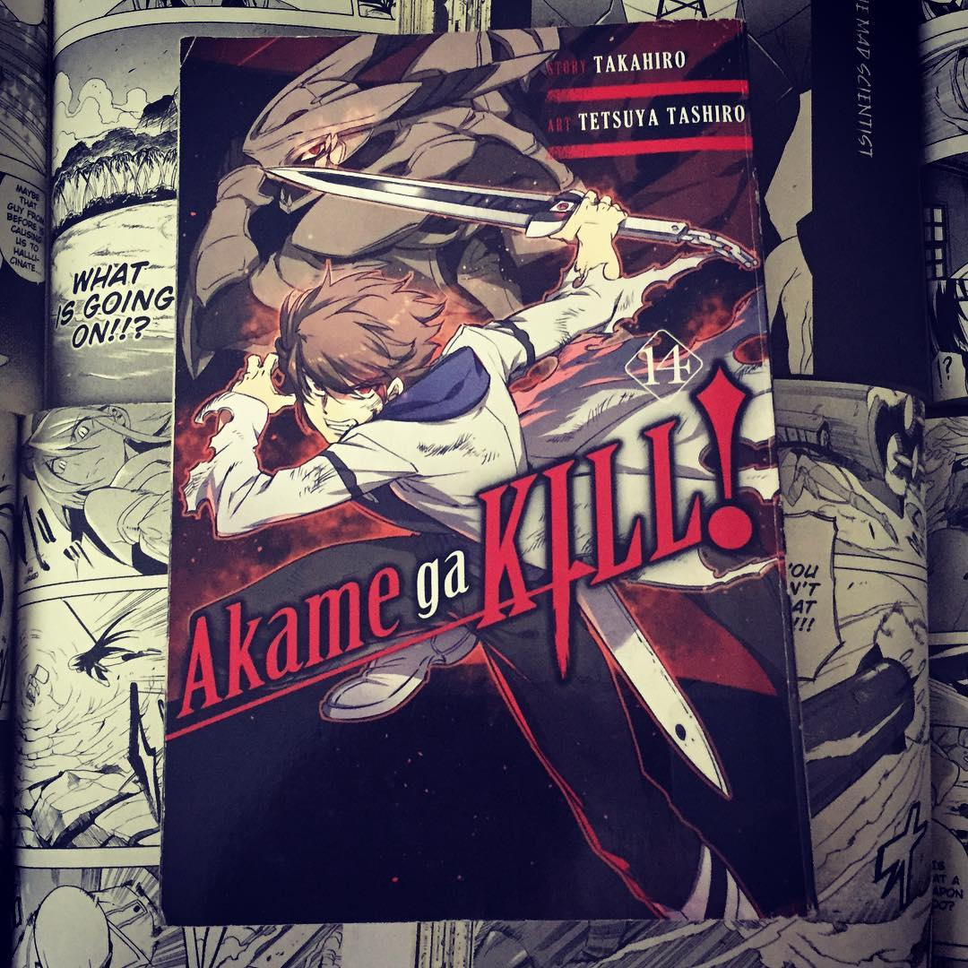 Featured image for Akame ga Kill! (Volume 14)