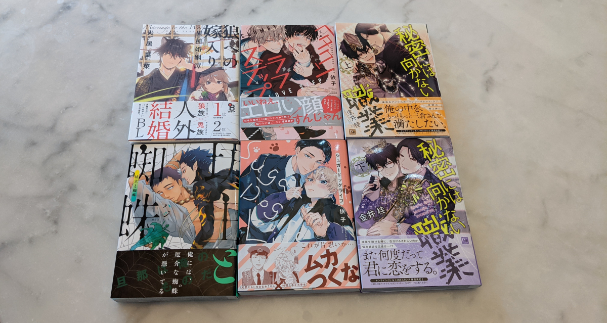 Featured image for Manga Haul #1: Cute Boys and Failing at Videos