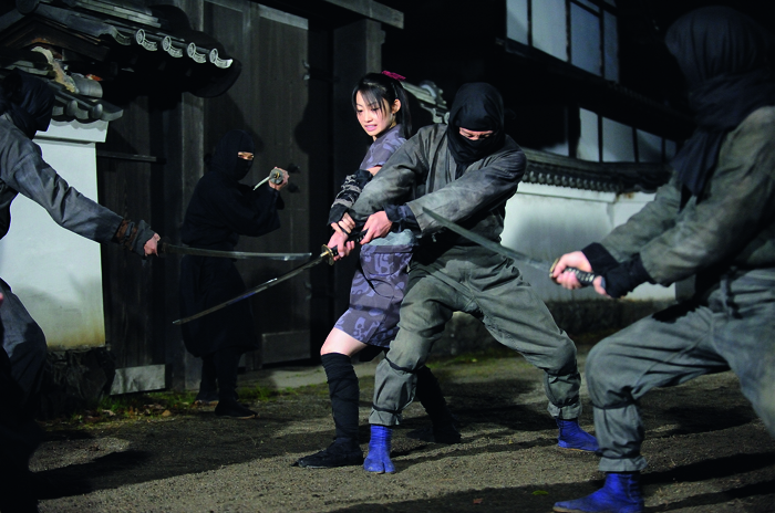 Featured image for Rogue Ninja (2009)