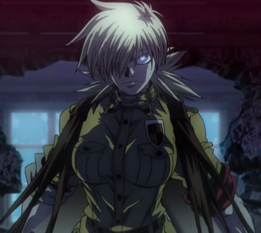 Featured image for Hellsing and Hellsing Ultimate
