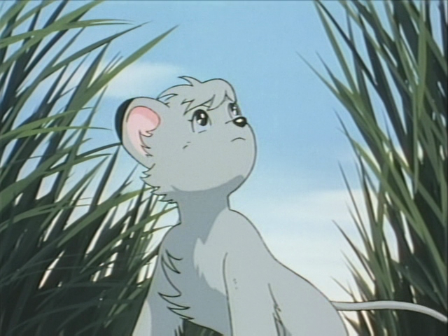 Featured image for Jungle Emperor (1989) Episode 19