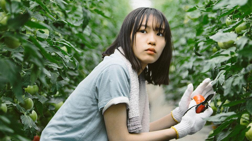 Featured image for Meet MINAMI Sara: