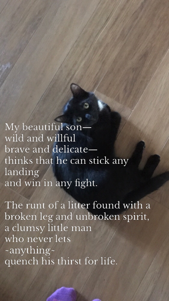 Featured image for Poems for my Boys