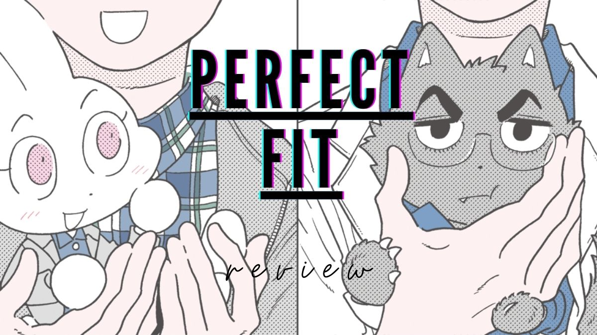 Featured image for PERFECT FIT REVIEW