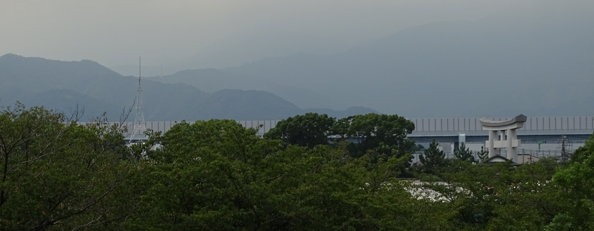 Featured image for Japan Diary: August 2021